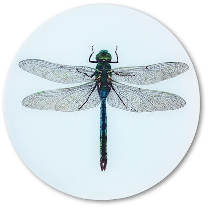 Dragonfly Glass Table Saver
